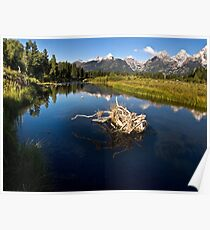 Schwabacher Landing - Grand Tetons National Park, Wyoming Poster