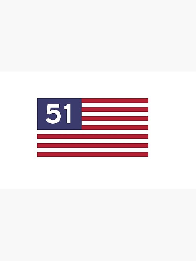 Alle 51 Staaten von squibink