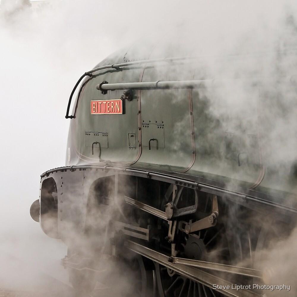 LNER A4 Class 4-6-2  60019 Bittern by Stephen Liptrot