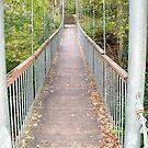 Walking Bridge by Diane Trummer Sullivan