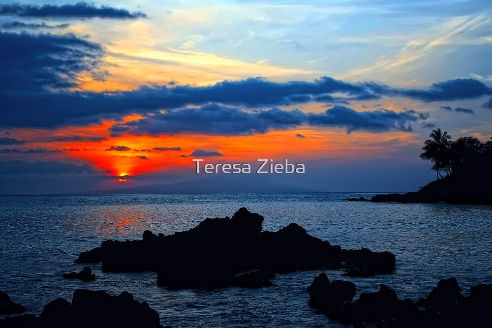 Maui Magical Sunset by Teresa Zieba