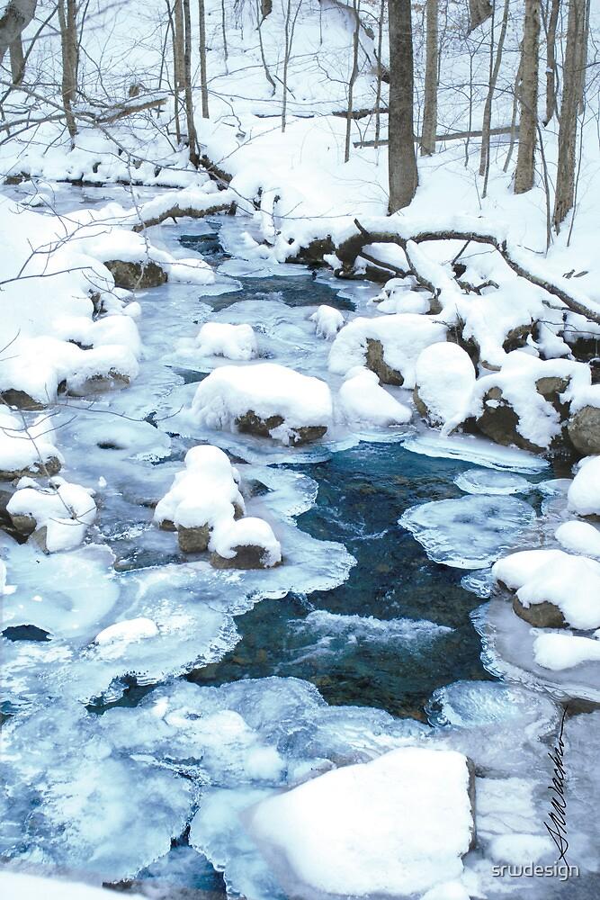 Winter Blue by Susan R. Wacker