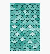 Teal Fish Scale Photographic Print