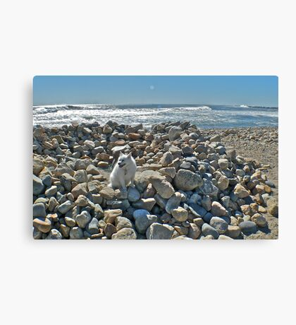 Where The Heck - In Rhode Island? Canvas Print