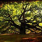 The famous Angel Oak Tree by Susanne Van Hulst