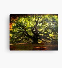 The famous Angel Oak Tree Metal Print