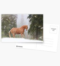 Christmas Horse Postcards