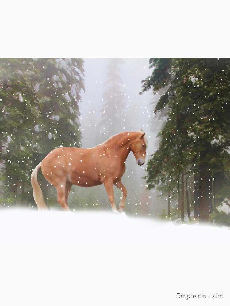 Weihnachtspferd von LazyL