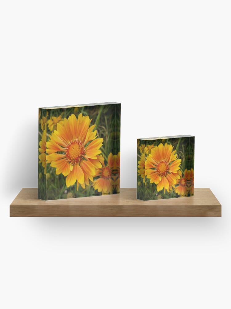 Alternate view of Shining Bright from A Gardener's Notebook Acrylic Block