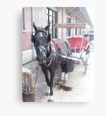 Natchez Carriage Rides Metal Print