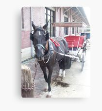 Natchez Carriage Rides Canvas Print