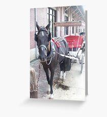 Natchez Carriage Rides Greeting Card