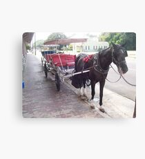 Natchez Carriage Rides - Natchez, Mississippi Canvas Print