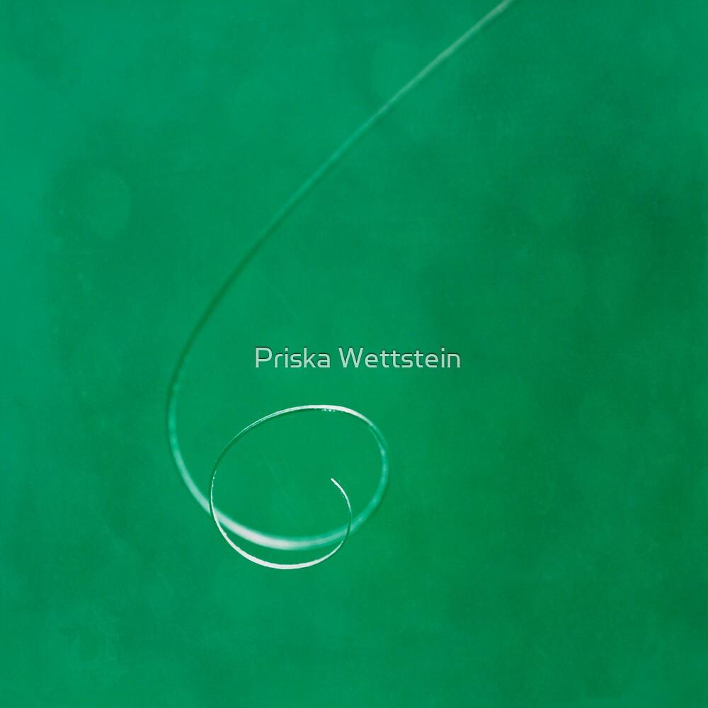 Squiggle by Priska Wettstein