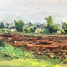 Field- oil painting by Maggie  Carroll