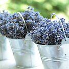 Lavender buckets by i l d i    l a z a r