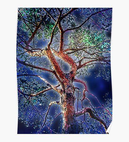 moon tree Poster