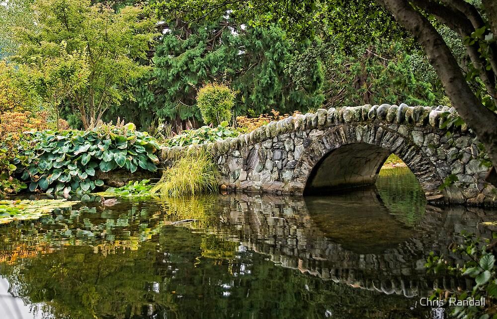 Stone Bridge Reflection by Chris  Randall