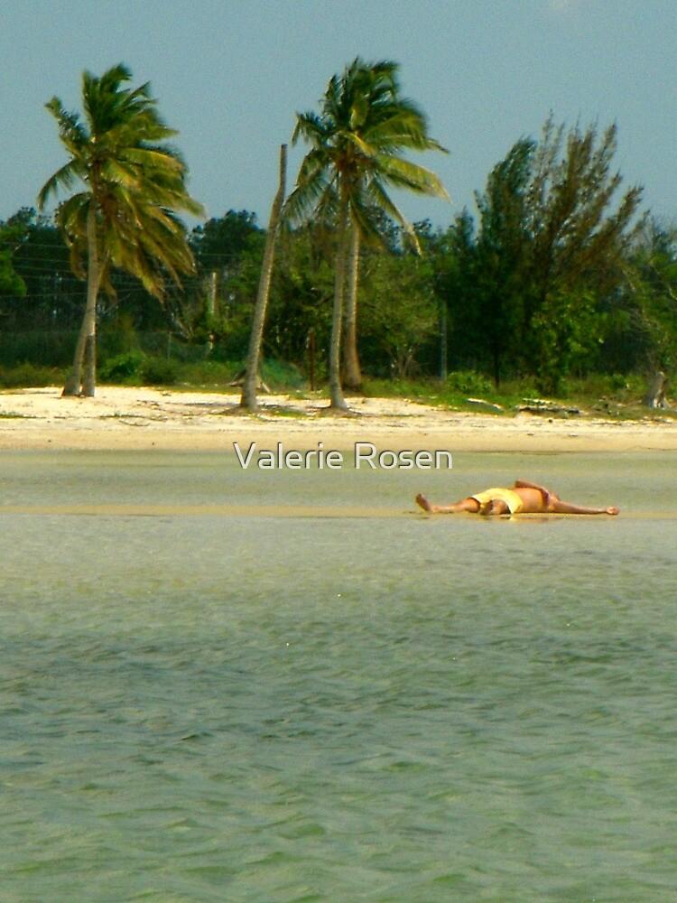Pure Caribbean Bliss by Valerie Rosen