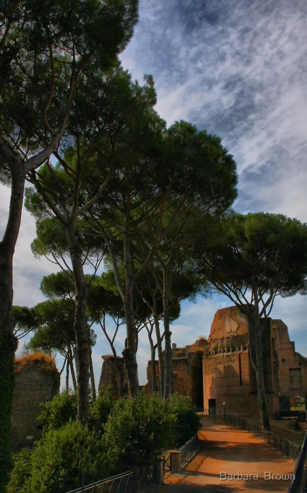 On Palatine Hill by Barbara  Brown