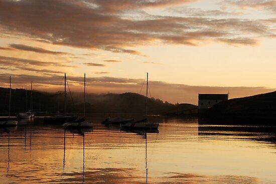 Misty, golden dawn - Baltimore, West Cork, Ireland by Orla Flanagan