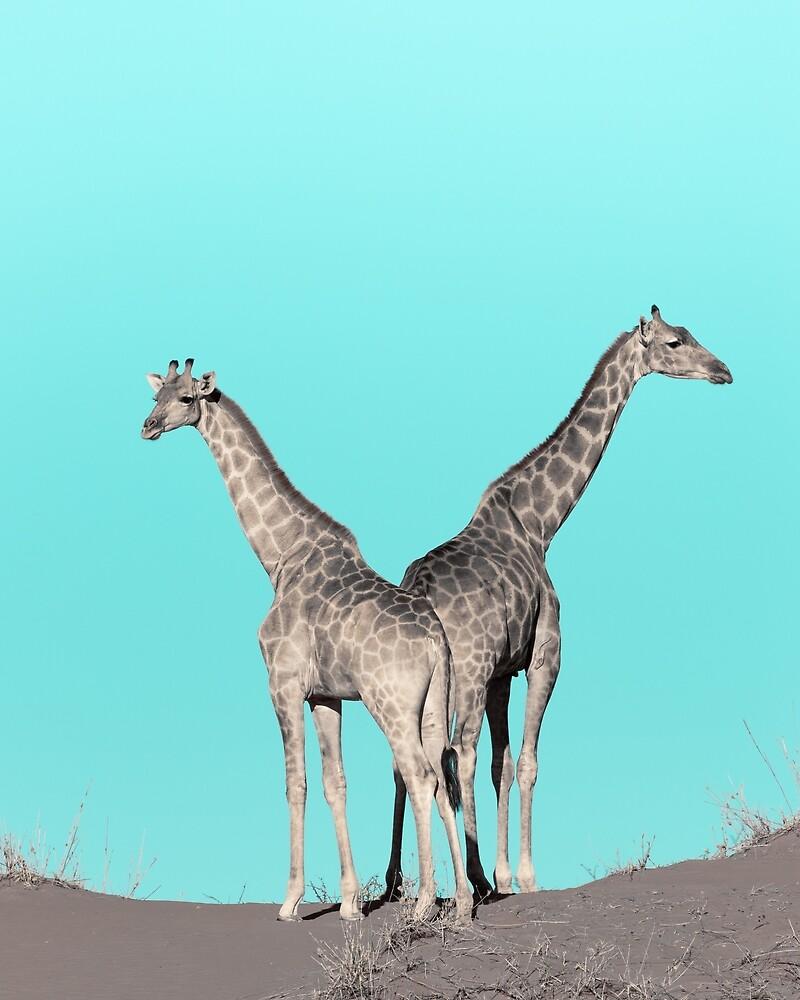 Extravagante Giraffen von dalibro