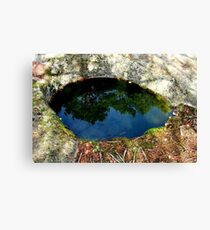 The Eye of the Forest Canvas Print