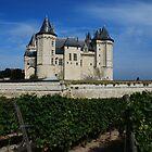Castle in Saumur by julie08