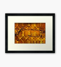 OnePhotoPerDay Series: 264 by L. Framed Print