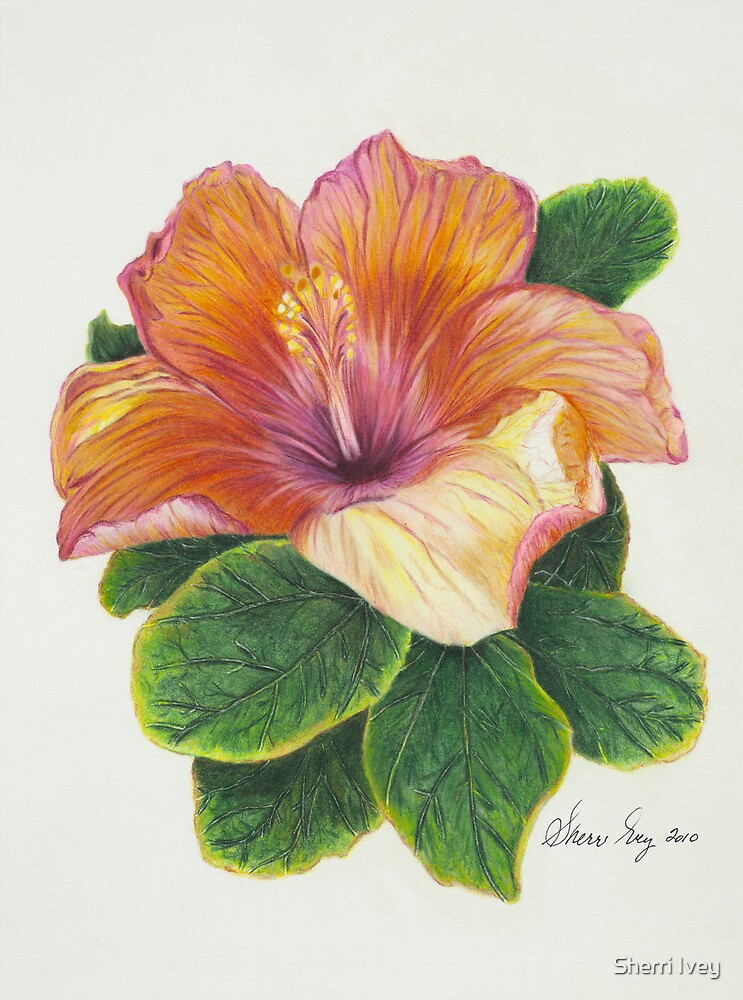 Beauty and Imperfection by Sherri Ivey