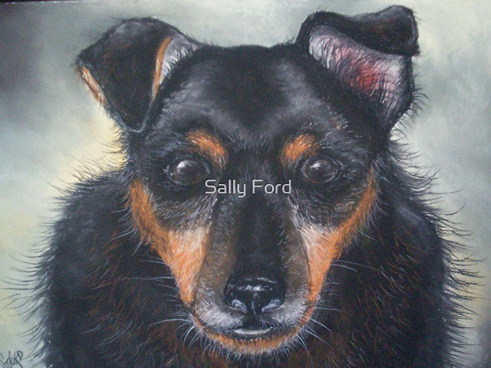 Dizzy by Sally Ford