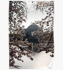 Jefferson Memorial, Cherry Blossoms  Poster