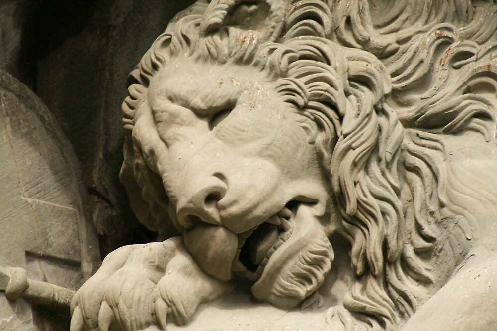 Crying Lion by David McGilchrist