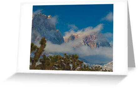 SNOW AT BONNIE SPRINGS by George Trimmer