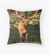New Head Gear Throw Pillow