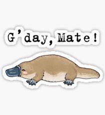 Little platypus - Animals series Sticker