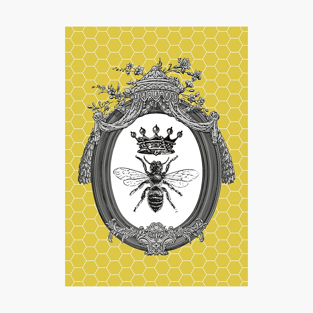 Queen Bee | Vintage Honey Bees | Honeycomb Patterns |  Photographic Print