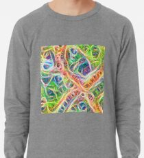 Neural network motif Lightweight Sweatshirt