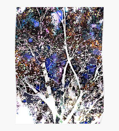 quiet tree Poster