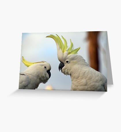 You just have to listen to me! Greeting Card