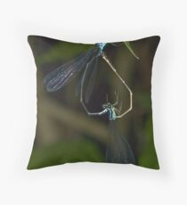 Inverted Heart Throw Pillow