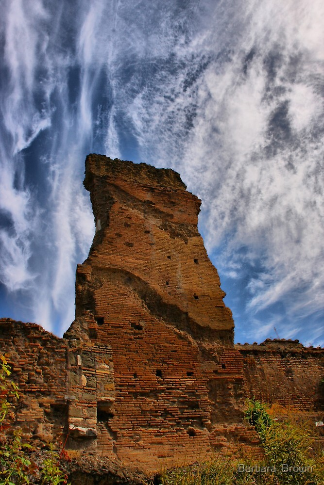 Ruins Against the Sky by Barbara  Brown