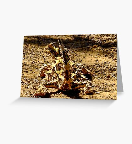 Thorny Mountain Devil - Mount Matilda, Western Australia Greeting Card