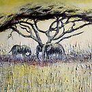 African Shade by Sue Nichol