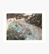 Wrapped in Plastic (color version) Art Print