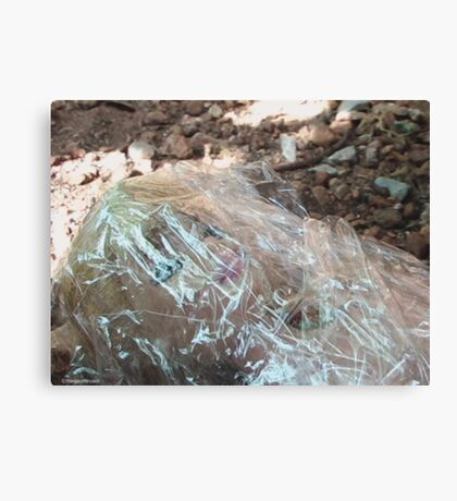 Wrapped in Plastic (color version) Canvas Print