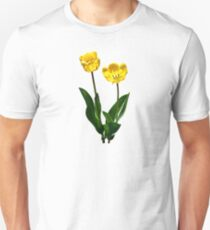 Backlit Yellow Tulips T-Shirt