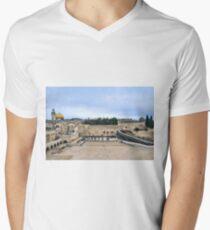 Jerusalem and the western wall Men's V-Neck T-Shirt