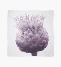 Monochrome - Centaurea Scarf