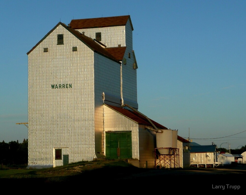 """Old Elevator...""""A Disappearing ICON"""" by Larry Trupp"""